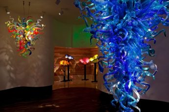 chihuly_collection_tampa-345x230 - Busch Garden