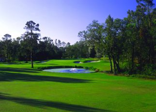 ocalanational_golf_club1-322x230 - Busch Garden